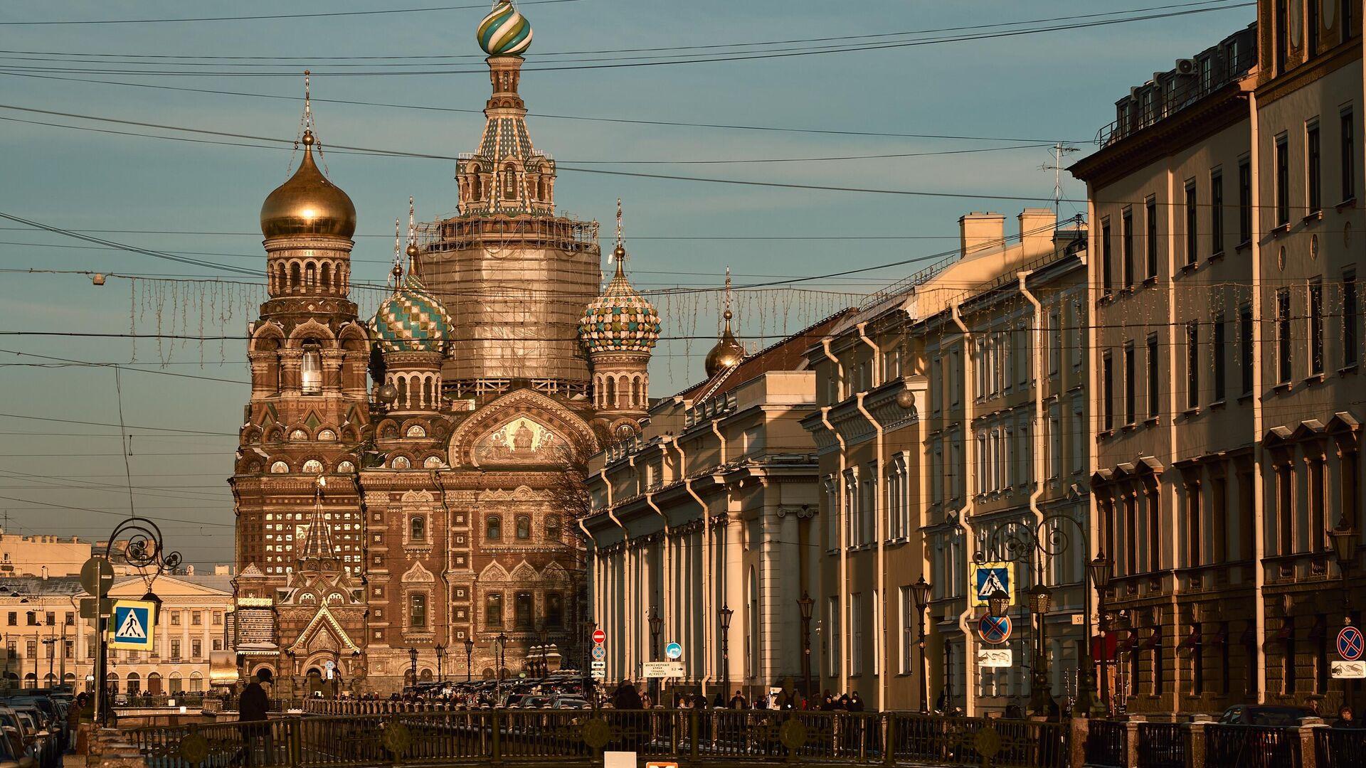 В Петербурге призвали ЦИК проверить законность решений горизбиркома