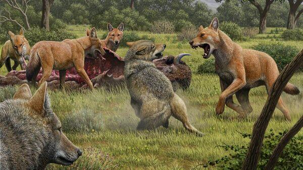 Так в представлении художника выглядели ужасные волки, отгоняющие серых волков от туши бизона