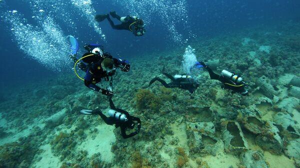 Аквалангисты в Красном море