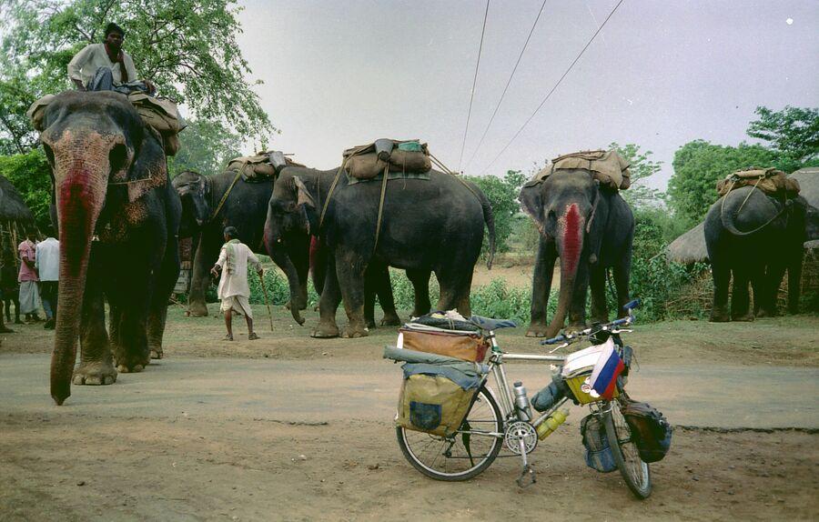 Индия, 1996