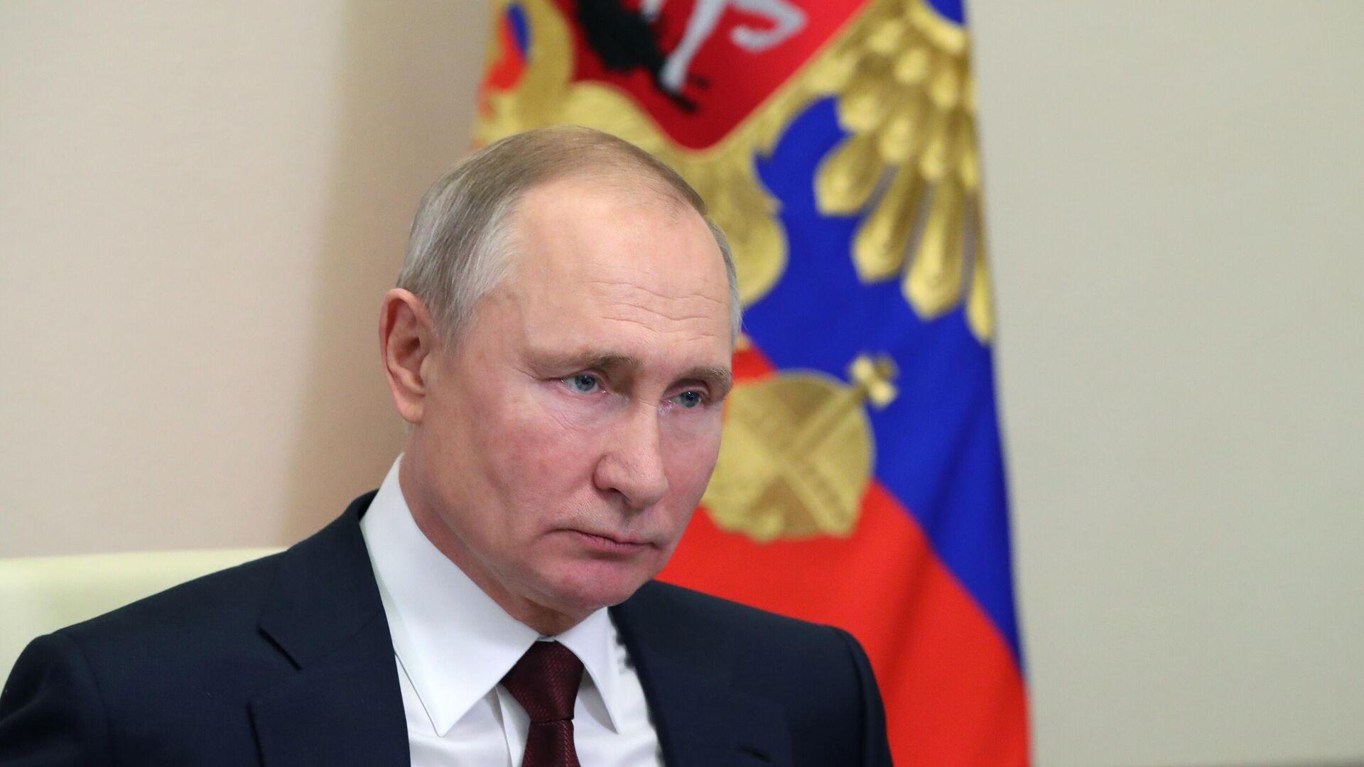 Президент РФ Владимир Путин проводит заседание Совета по науке и образованию в режиме видеоконференции - РИА Новости, 1920, 16.02.2021