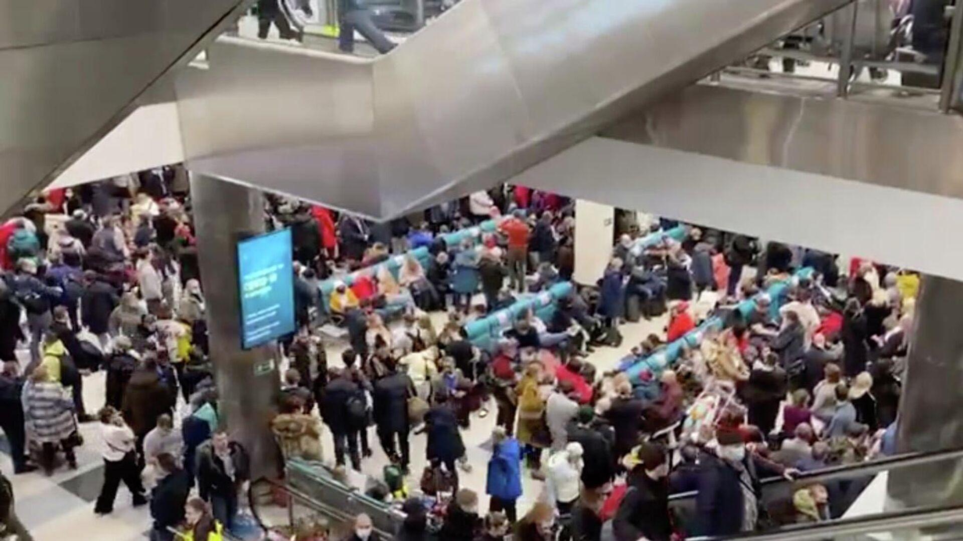 В аэропорту Домодедово скопилось большое число пассажиров, которые не могут улететь из-за сильного снегопада в московском регионе - РИА Новости, 1920, 13.02.2021