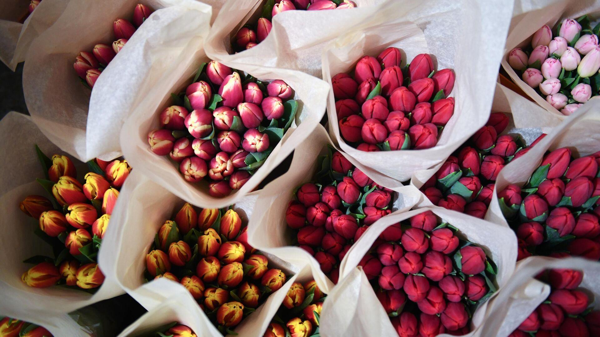 Тюльпаны к 8 Марта - РИА Новости, 1920, 05.03.2021