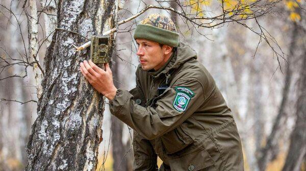 Сергей Красиков проверяет фотоловушку
