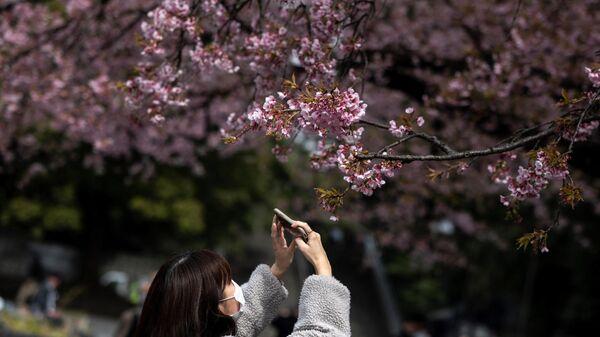Девушка фотографирует цветущую сакуру в Токио, Япония