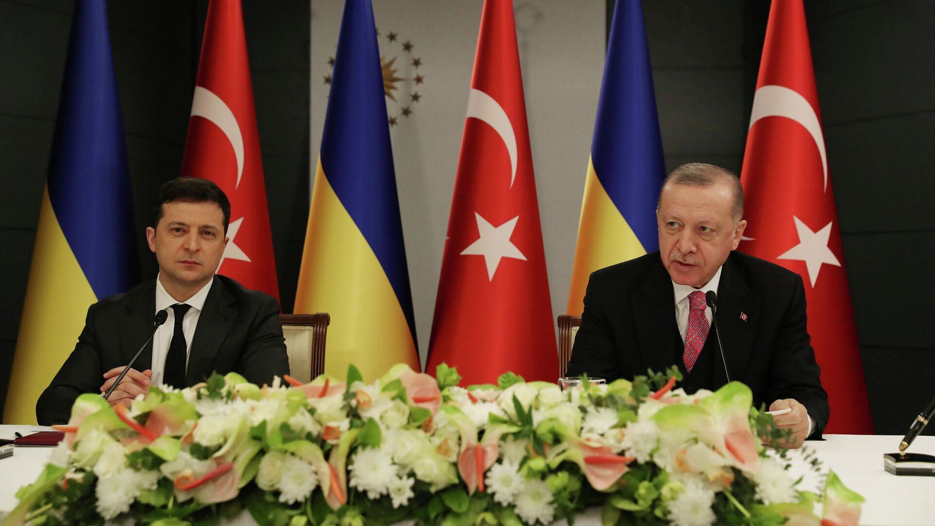 Президент Турции Тайип Эрдоган и президент Украины Владимир Зеленский во время встречи в Стамбуле, Турция - РИА Новости, 1920, 15.04.2021