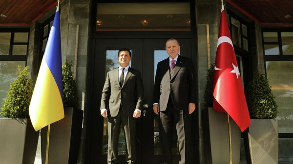 Президент Украины Владимир Зеленский и президент Турции Реджеп Тайип Эрдоган в Стамбуле