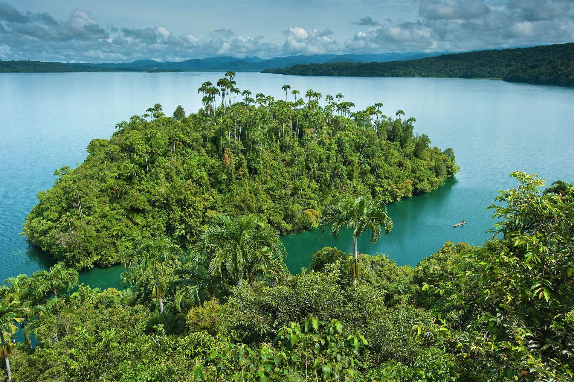 Папуа-Новая Гвинея, остров Кутубу - РИА Новости, 1920, 16.07.2021