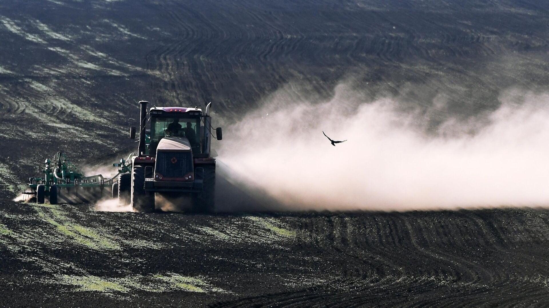 Аграрии Липецкой области пересеют часть озимых