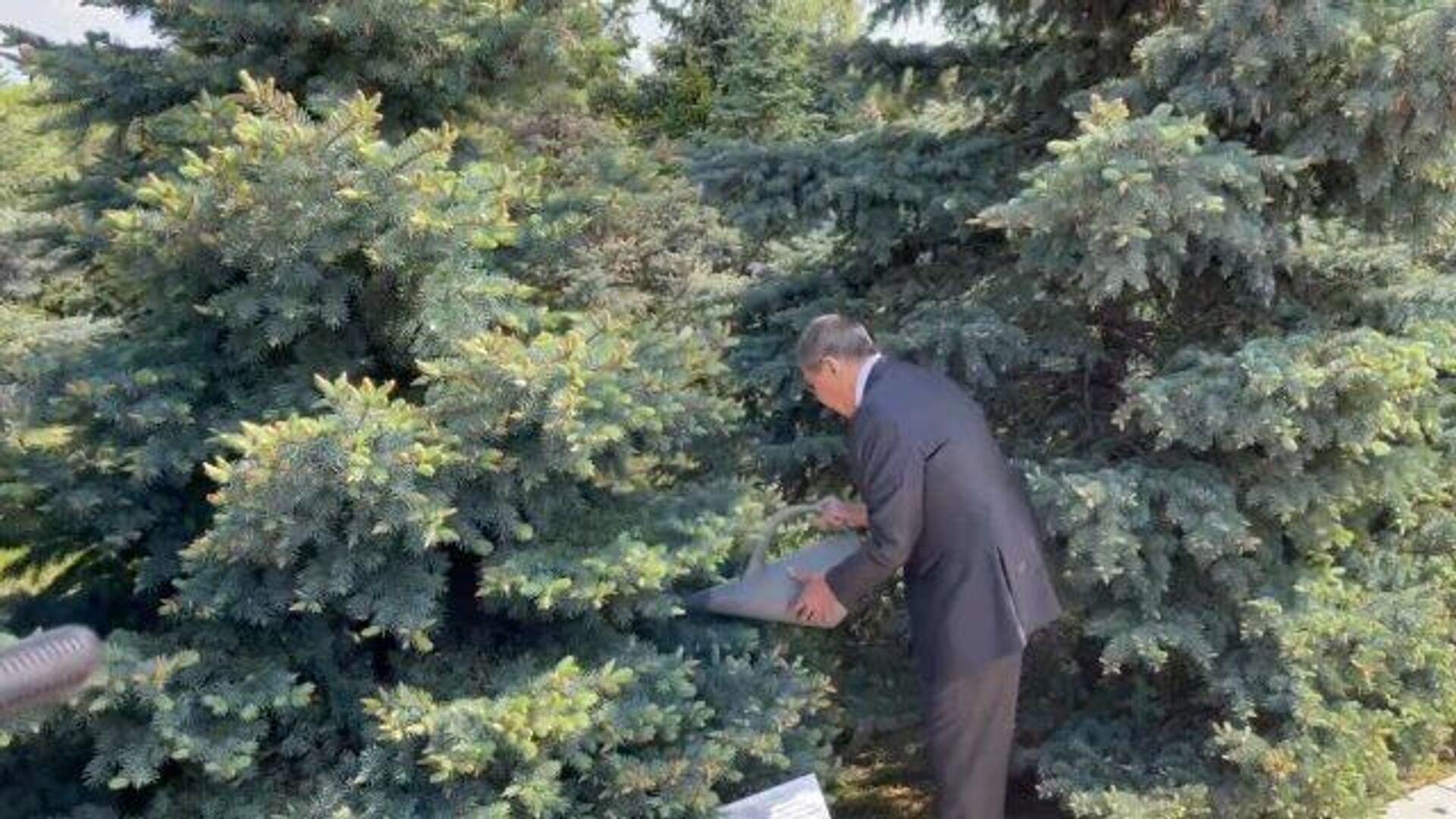 Лавров почтил память жертв геноцида армян в Ереване и полил посаженную им в 2007 году ель  - РИА Новости, 1920, 06.05.2021
