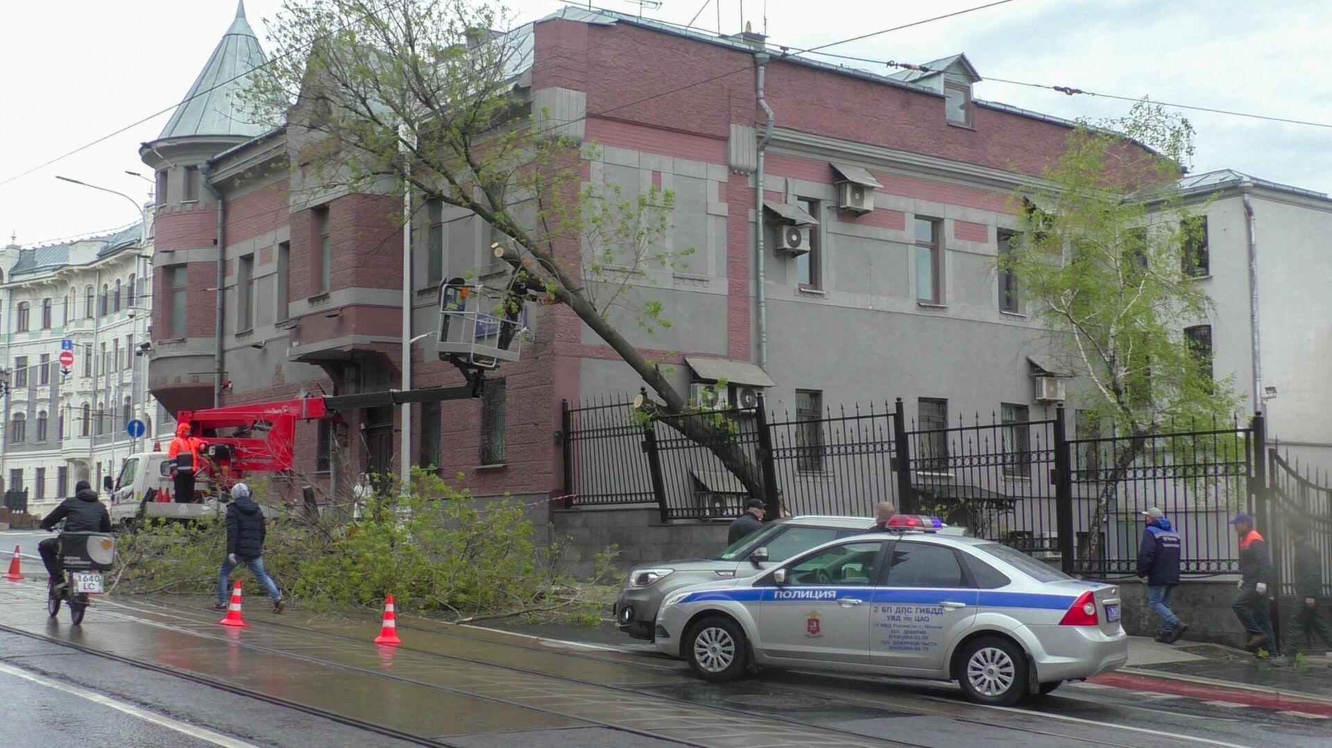 Аварийные службы устраняют последствия упавшего дерева на проезжую часть на Яузском бульваре - РИА Новости, 1920, 06.05.2021