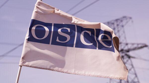 Флаг ОБСЕ в районе линии боевого соприкосновения у поселка Золотое Луганской Народной Республики