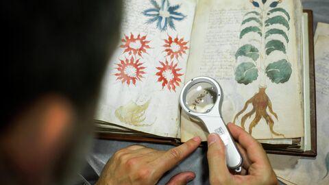 Рукопись Войнича в испанской издательской компании Siloe Luis Miguel