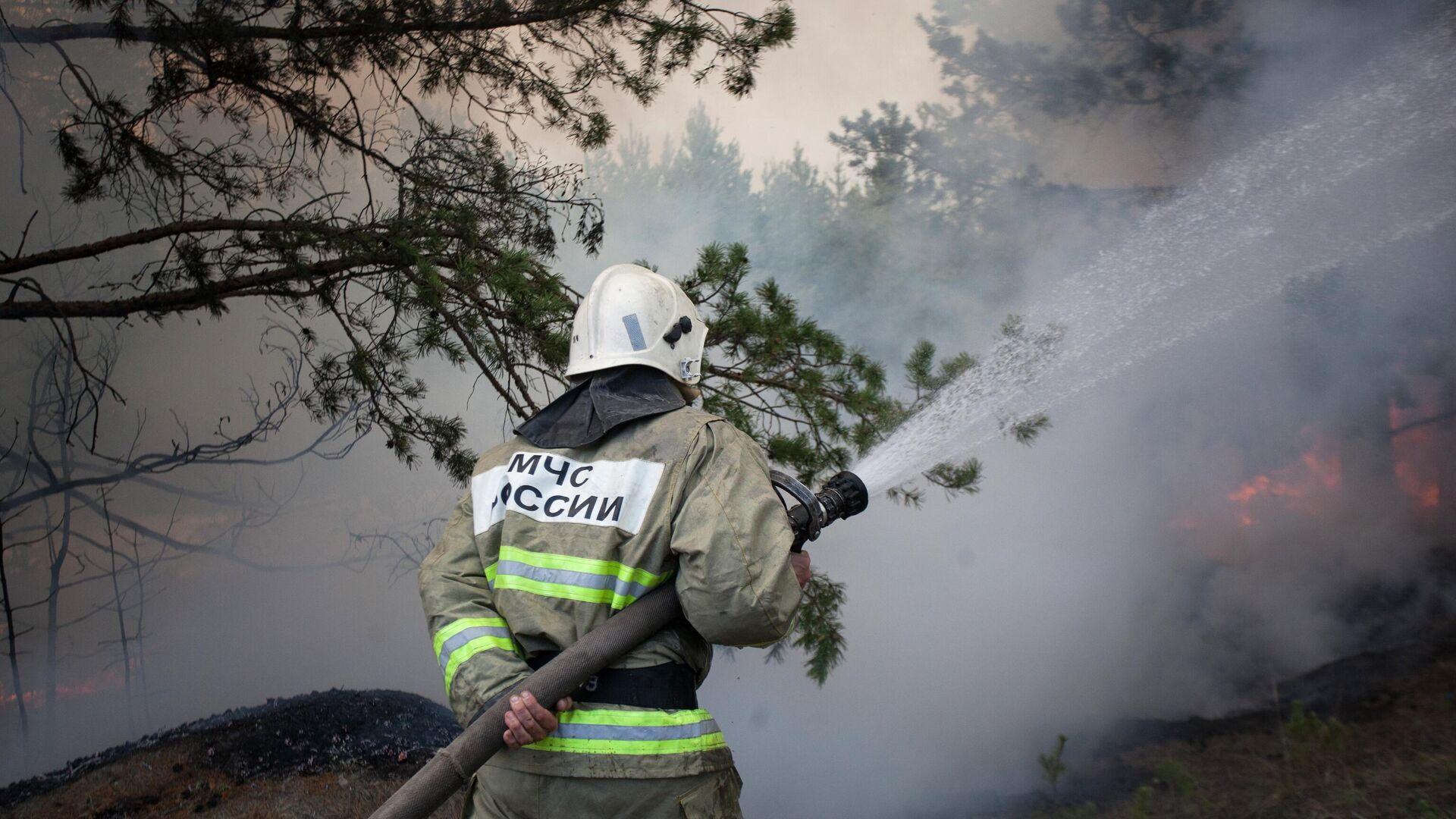 Под Краснокамском потушили масштабный торфяной пожар