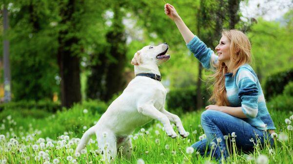 Женщина выгуливает собаку в парке