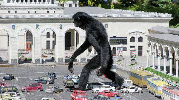 Гиббон гуляет среди моделей автомобилей в парке миниатюр в Бахчисарае, Крым