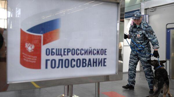 Сотрудник полиции с собакой обеспечивает меры безопасности во время голосования на избирательном участке в аэропорту Санкт-Петербурга
