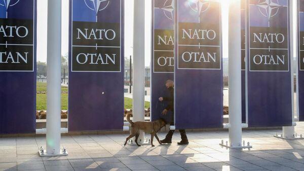 Офицер службы безопасности с собакой перед зданием штаб-квартиры НАТО в Брюсселе
