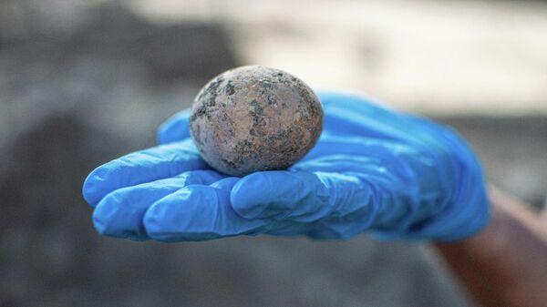 Целое куриное яйцо возрастом порядка 1 тысячи лет обнаружено в ходе раскопок в израильском городе Явне к югу от Тель-Авива