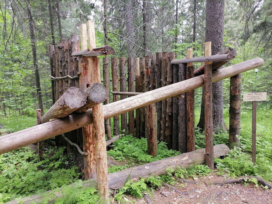 Кулема - ловушка на медведя в музее Торум Маа