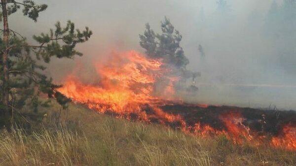Лесные пожары в Якутии и Челябинской области