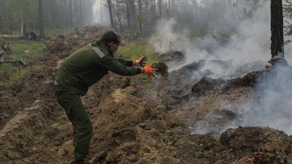 Люди копают траншеи во время тушение лесных пожаров в Якутии