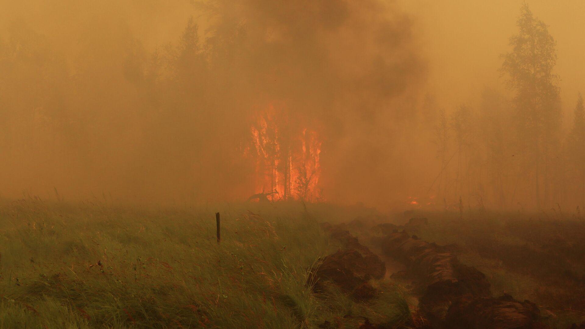 Лесной пожар в Якутии - РИА Новости, 1920, 27.07.2021