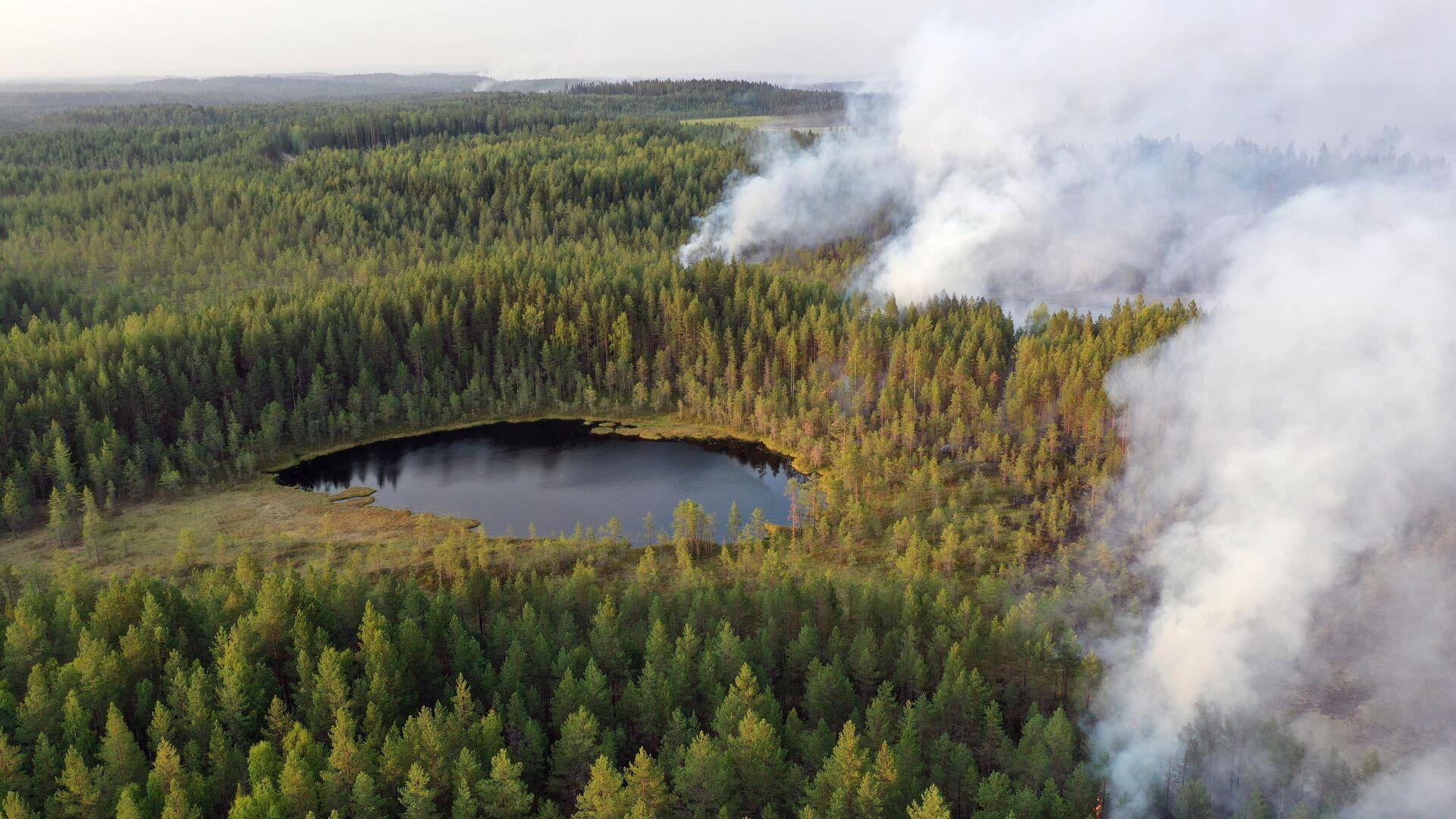 Горящие леса в районе Сямозера в Пряжинском районе Карелии - РИА Новости, 1920, 22.07.2021