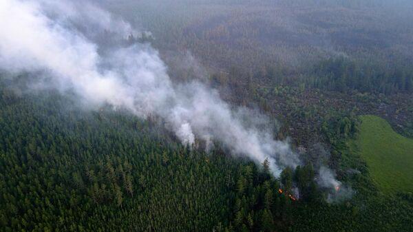 Власти Якутии рассказали о ситуации с пожарами в регионе