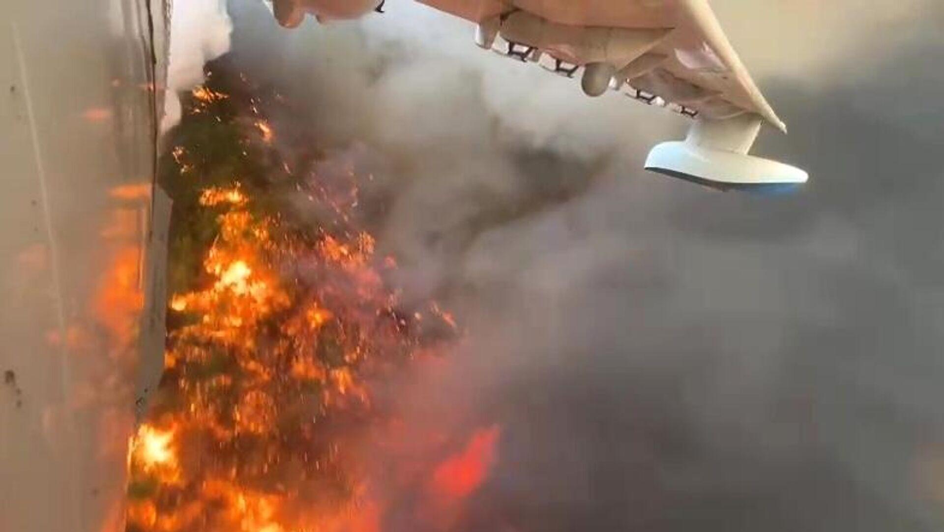Тушение лесных пожаров в Турции - РИА Новости, 1920, 31.07.2021