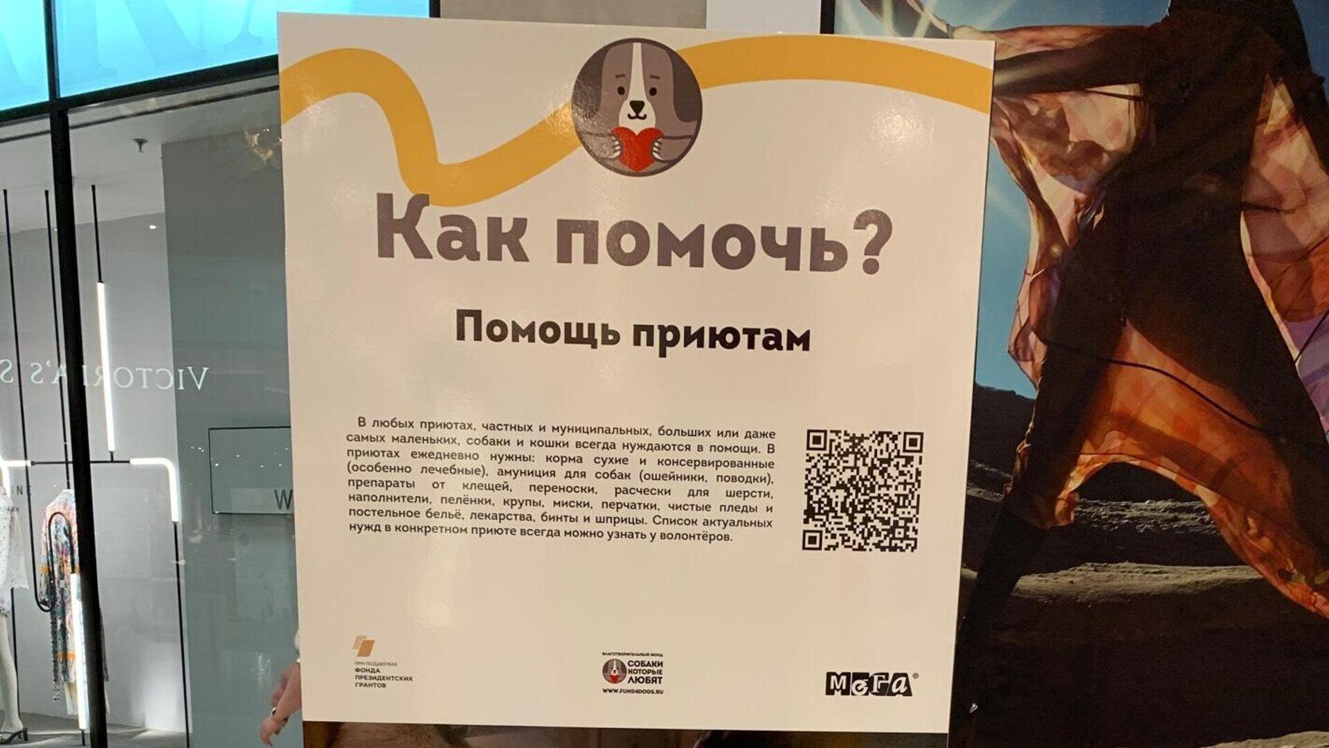 Фестиваль Собаки, которые любят, рассказывающий о волонтерстве в приюте - РИА Новости, 1920, 04.08.2021