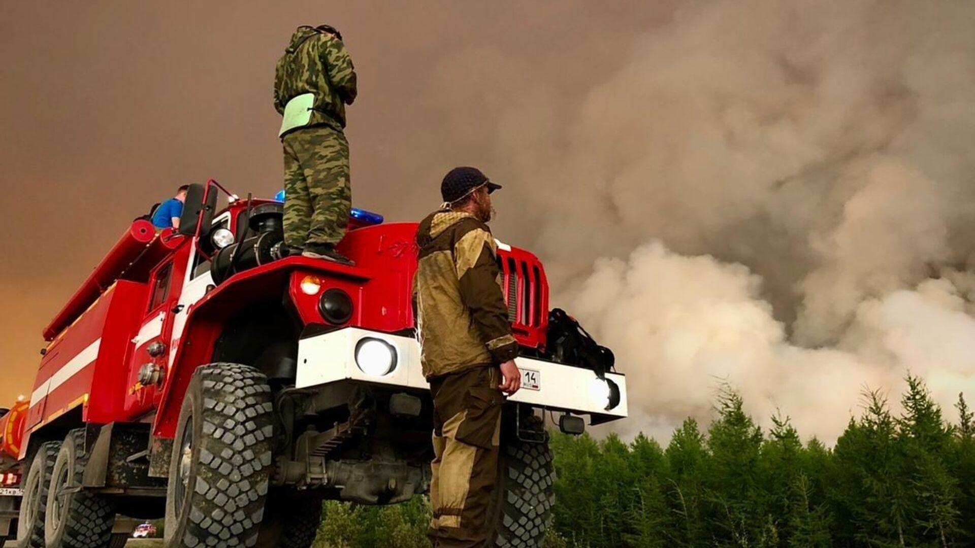 В России потушили 51 лесной пожар за сутки