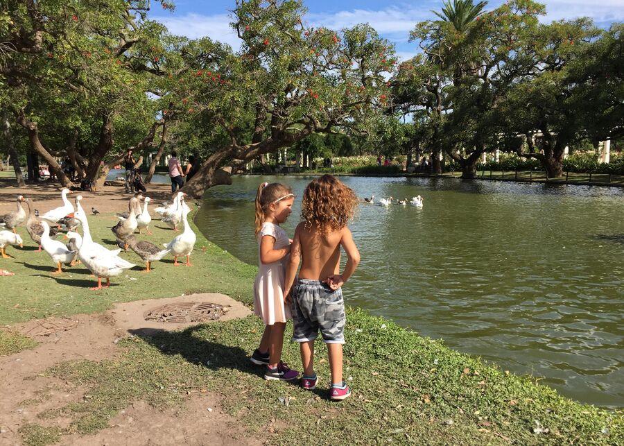 Дети играют в парке, Аргентина