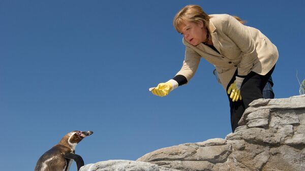 Канцлер Германии Ангела Меркель кормит пингвина во время посещения аквариума Ozeaneum в немецком городе Штральзунд