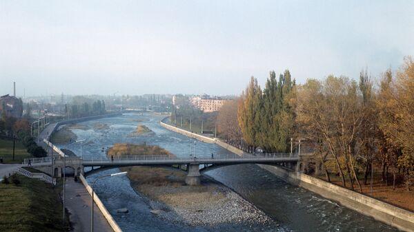 В реке Терек гибнет рыба | 337x600
