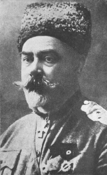 Русский военачальник, политический и общественный деятель, писатель Антон Иванович Деникин