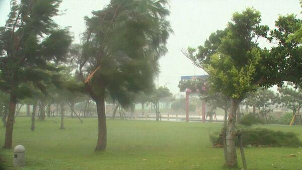 Тайфун Ногури обрушился на юг Японии. Кадры с места событий