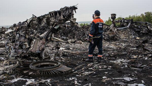 Обломки Boeing 777 компании Malaysia Airlines в районе села Грабово в Донецкой области