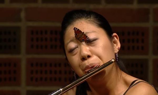 Необычный слушатель, или Концерт для флейты и бабочки