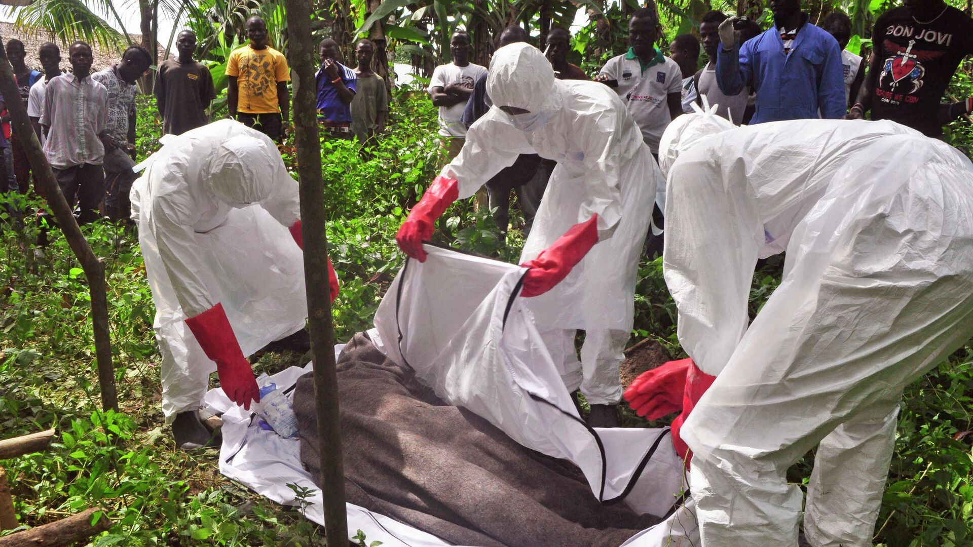 Ученые объяснили причину новой вспышки лихорадки Эбола