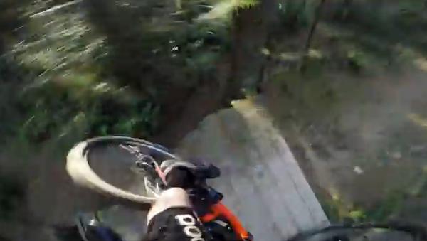 Небезопасный велоспорт, или Велопрогулка по дремучему лесу