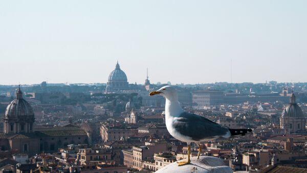Чайка на крыше дома в Риме. Архивное фото