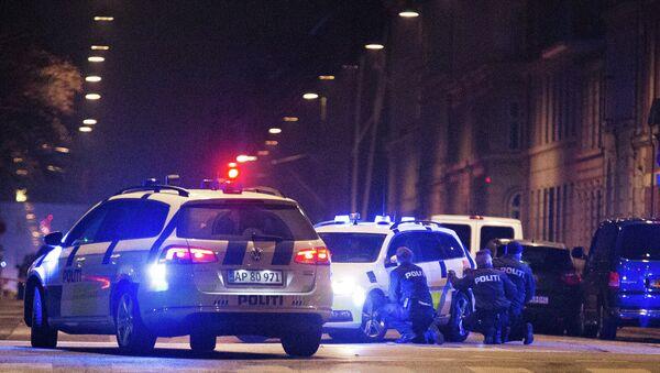 Полиция на месте стрельбы в Копенгагене, 15 февраля 2015. Архивное фото