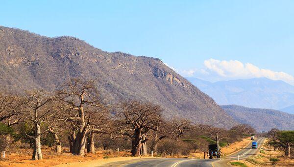 Автодорога в Танзании. Архивное фото
