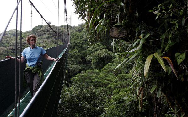 Лесной заповедник Монтеверде Клауд