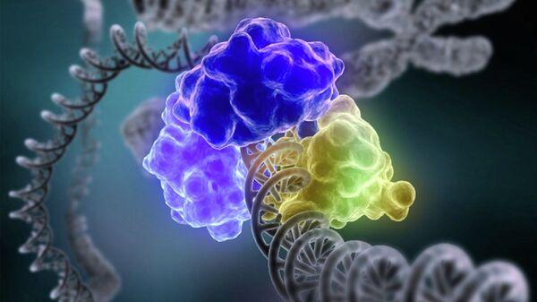 Так художник представил себе процесс починки одиночных разрывов в спирали ДНК