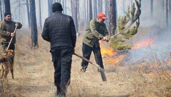Добровольцы тушат лесной пожар. Архивное фото