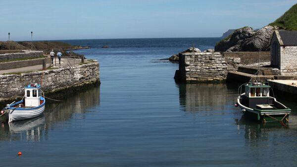 Ирландия. Архивное фото