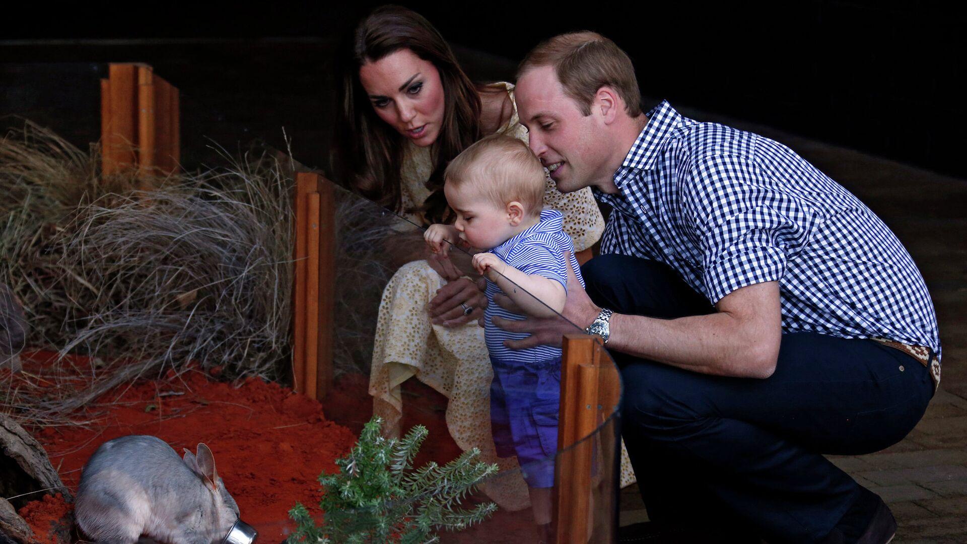 Принц Уильям и Кейт Миддлтон с сыном Джорджем в зоопарке Сиднея  - РИА Новости, 1920, 31.07.2021