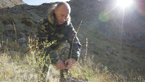 Президент РФ Владимир Путин в горах. Архивное фото